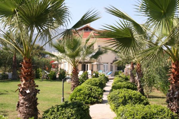 Dalyanjewel luxury villa with landscaped garden: Palm tree lined pathway