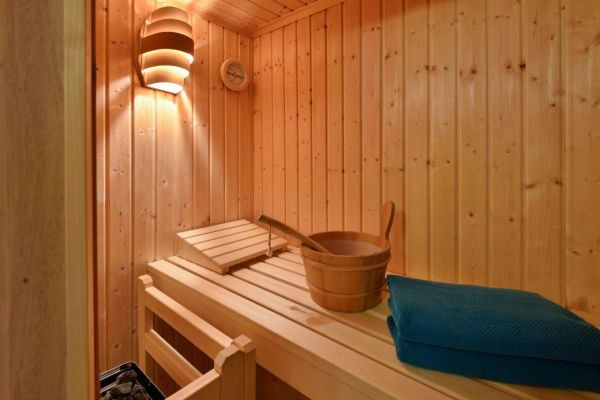 Black Forest holiday home with sauna: sauna